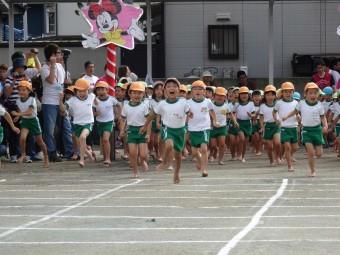 ウサギ運動会 (21)